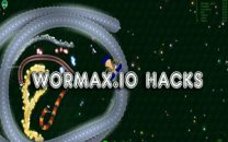 How To Play With Wormax.io Hack?