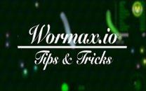 Wormaxio Tips & Tricks
