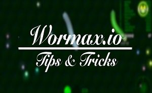 wormaxio tips