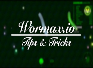Photo of Wormaxio Tips & Tricks